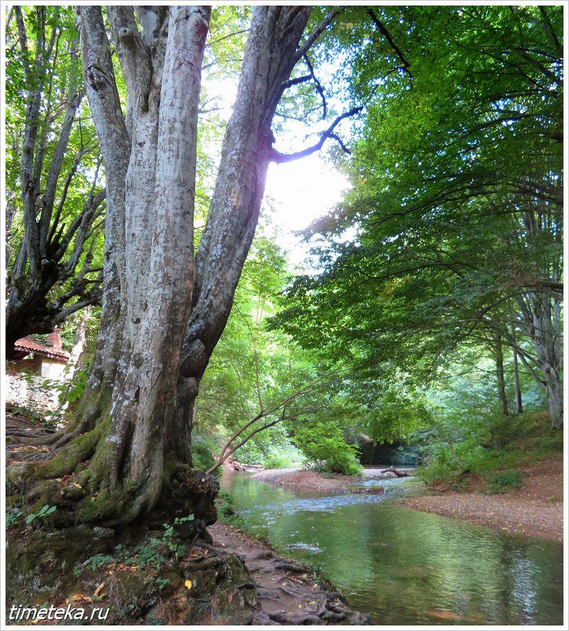 Река Докузак